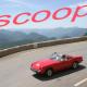 scoop...