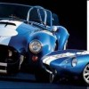 Shelby et Cobra : The come back…